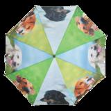 Regenschirm Hunde