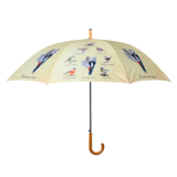 Regenschirm Vögeln