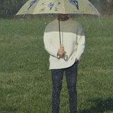Vögeln Regenschirm