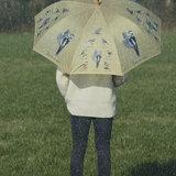 Vögeln Schirm
