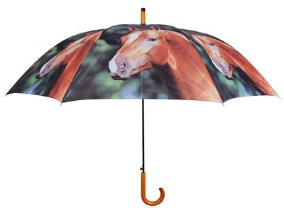 Pferde Regenschirm