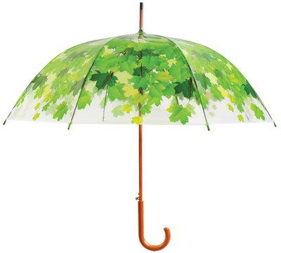 Durchsichtiger Regenschirm - Baum