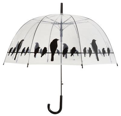 Durchsichtiger Regenschirm - Vögel