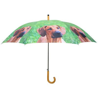 Hunde Regenschirm - Ridgeback - Braun