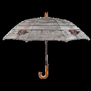 hunde und katze regenschirm