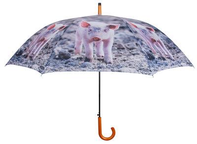 Schweinchen Regenschirm