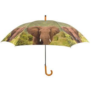 Elefant Regenschirm
