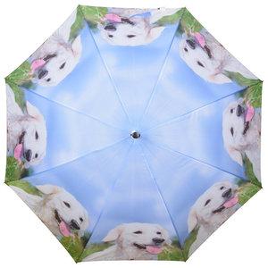Hunde Regenschirm - Weiß