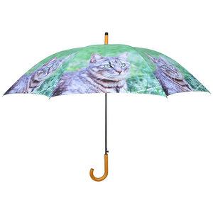 Katze Regenschirm - Grau